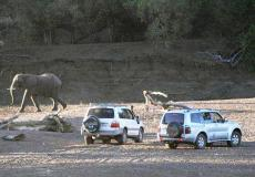 Ratho Bush Camp, Alldays, Limpopo Tourism.
