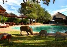 Pumula Private Bush Chalet, Mabalingwe, Limpopo