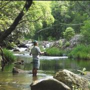 Cheerio Trout Fishing Lodge, Magoebaskloof, Haenertsburg, Limpopo Tourism